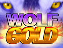 Preview of the Wolf Golf slot game.